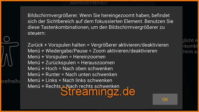 Amazon Fire TV Bildschirmlupe Funktion